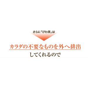 ねじめ びわ茶24 2gティーバッグ 24包入 十津川農場|nomimon|04
