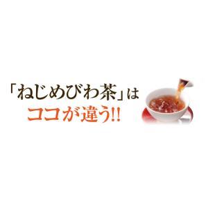ねじめ びわ茶24 2gティーバッグ 24包入 十津川農場|nomimon|06