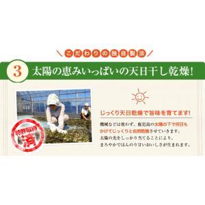ねじめ びわ茶24 2gティーバッグ 24包入 十津川農場|nomimon|08