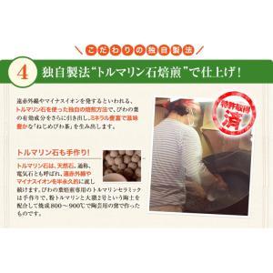 ねじめ びわ茶24 2gティーバッグ 24包入 十津川農場|nomimon|09