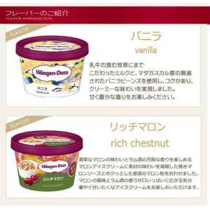 ハーゲンダッツ アイスクリームお中元スペシャルセット|nomimon|02