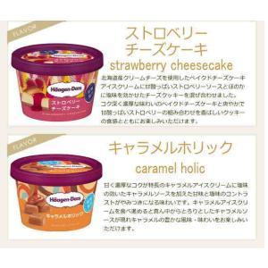 ハーゲンダッツ アイスクリームお中元スペシャルセット|nomimon|03