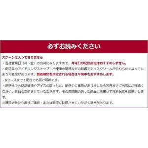 ハーゲンダッツ アイスクリームお中元スペシャルセット|nomimon|07