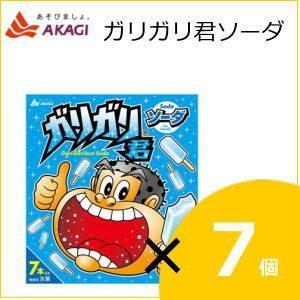 赤城乳業 ガリガリ君ソーダ (63mlx7本)×7個入り