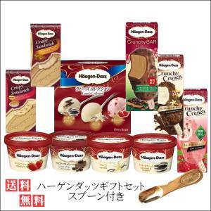 母の日 ハーゲンダッツアイスクリームスプーン付きギフトセット  お礼 お返し 内祝い 出産祝い お祝|nomimon