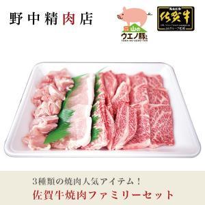 バーベキューに最適 国産牛肉 焼肉セット  佐賀牛焼肉ファミリーセット(3〜4人分)600g
