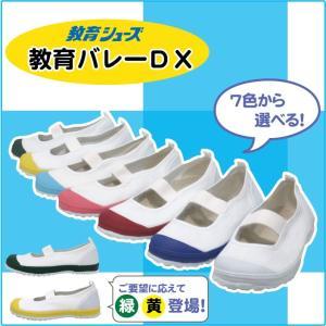 上履き バレーDX 教育シューズ|nonnonxx2001