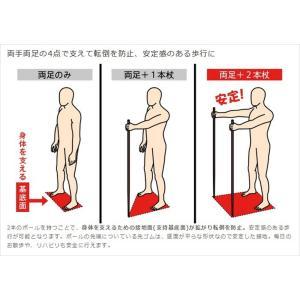 シナノ もっと安心2本杖 シェブロン noon-store