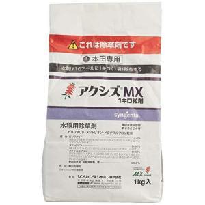 シンジェンタジャパン アクシズMX1キロ粒剤 1kg|noon-store