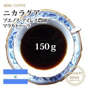 ニカラグア ブエノスアイレス マラカトゥーラ 150g nordcoffee