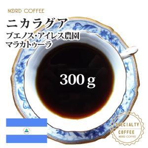 ニカラグア ブエノスアイレス マラカトゥーラ 300g nordcoffee