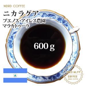 ニカラグア ブエノスアイレス マラカトゥーラ 600g(300g×2袋) nordcoffee