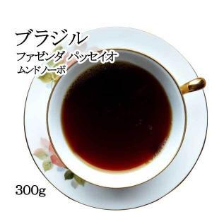 ブラジル ファゼンダ パッセイオ ムンドノーボ 300g|nordcoffee