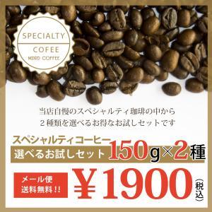 コーヒー豆 スペシャルティコーヒー 選べる お試し セット 150g×2種類|nordcoffee