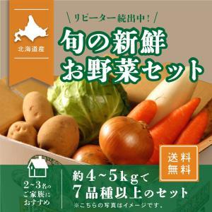北海道産 野菜セット 旬の新鮮お野菜詰め合わせ 7品種以上 80サイズ 調理しやすい常備野菜がメイン...