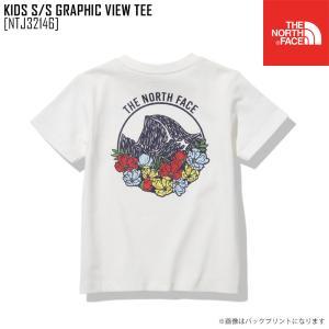 2021 春夏 新作 ノースフェイス THE NORTH FACE キッズ ショートスリーブ グラフィック ビュー ティー KIDS S/S GRAPHIC VIEW TEE Tシャツトップス NTJ32146|northfeel-apparel