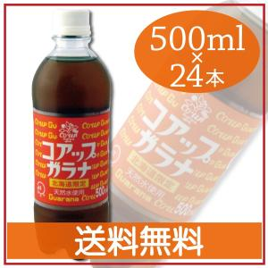 北海道限定 コアップガラナ 500ml×24本 送料無料