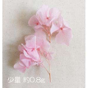 花材 プリザーブドフラワー ロイヤルアジサイ 小分け 0.8g【定形外送料0円】|nossery