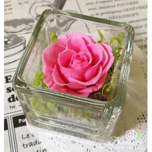 プリザーブドフラワー 誕生日プレゼント ガラスの中のミニローズ・マドレーヌピンク|nossery