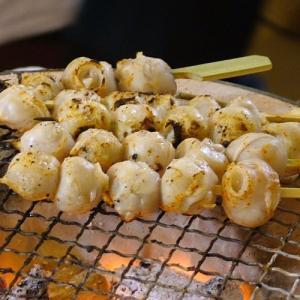 【10袋セット 送料無料】奥能登の漁師町でむかしから食べられてきた能登の珍味「いかとんび(いかの口)」いかとんび串