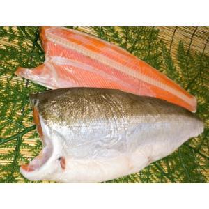 紅鮭半身(甘塩)フィレ(冷凍)|notosuisan