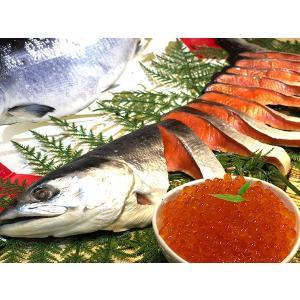 人気商品のコラボ! 特撰紅鮭半身(北洋産)とイクラの親子セット(冷凍)(数量限定)|notosuisan