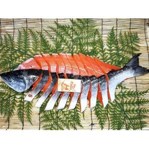 【御歳暮 ギフト】鮭界のセレブこと紅鮭さん。特撰甘塩紅鮭1本 2.7kg前後【姿切り身】/1尾【1】|notosuisan