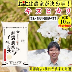 玄米 10kg キヌヒカリ 精米無料 玄米/白米選べます 生産農家を井澤商店4代目が厳選吟味 令和2年兵庫県稲美町産|noukamai