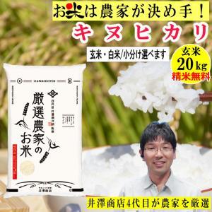 玄米 20kg キヌヒカリ 精米無料 玄米/白米・小分け選べます 生産農家を井澤商店4代目が厳選吟味 令和2年兵庫県稲美町産|noukamai