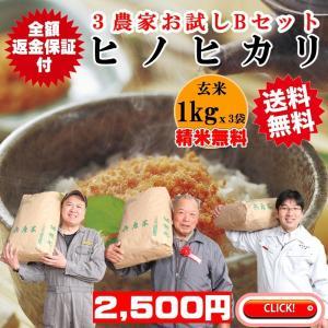 玄米1kgx3農家 精米無料 玄米/白米選べます ヒノヒカリ3農家食べ比べお試しBセット 稲美金賞農家の米 令和2年兵庫県産 送料無料 産地直送|noukamai