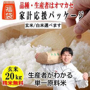 福袋 玄米20kg 単一原料米10kgx2袋 家計応援パッケージ 品種・生産農家は井澤商店4代目に完全おまかせ 精米無料 玄米/白米選べます 令和2年兵庫県産|noukamai