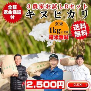 玄米1kgx3農家 精米無料 玄米/白米選べます キヌヒカリ3農家食べ比べお試しBセット 農家の米 令和2年兵庫県稲美町産 送料無料 産地直送|noukamai