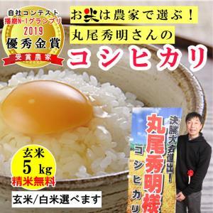 玄米 5kg 丸尾秀明さんのコシヒカリ  精米無料 玄米/白米選べます 播磨N-1グランプリ2019優秀金賞受賞農家 令和2年兵庫県産|noukamai