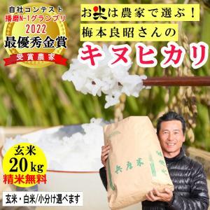 玄米 20kg  梅本良昭さんのキヌヒカリ 精米無料 玄米/白米・小分け選べます 稲美金賞農家の米 令和2年兵庫県稲美町産 産地直送 訳アリ値下げしました|noukamai