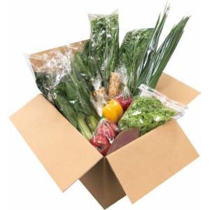 農流研 野菜セット|nouryuken