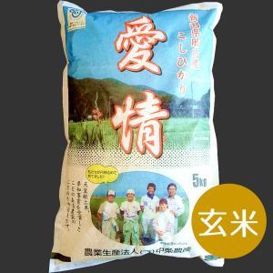 送料込 特別栽培米コシヒカリ(玄米)5Kg|nousan