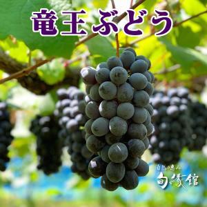 【滋賀の幸】竜王ぶどう(滋賀県竜王町産)葡萄4房2k入り 果物ブドウ|nouvelle