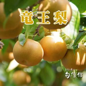 竜王梨 豊水(滋賀県竜王町産)3k入り 果物ナシ(ほうすい)|nouvelle