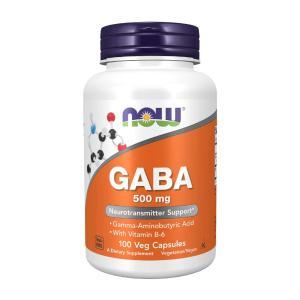 ナウフーズ ギャバ 500mg 100カプセル Now Foods GABA 500 100 Cap...