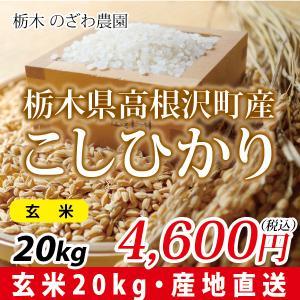 令和元年度 栃木県産 コシヒカリ(玄米) 20kg