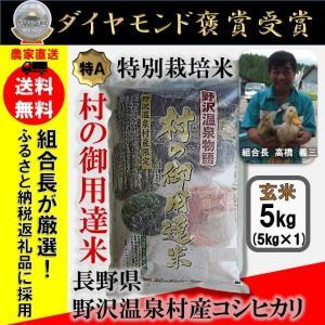 【送料無料】29年産 玄米 5kg コシヒカリ「野沢温泉物語 村の御用達米」 減農薬・有機肥料