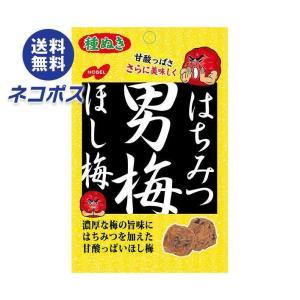 【全国送料無料】【ネコポス】ノーベル製菓 はちみつ男梅ほし梅 20g×6袋入|nozomi-market