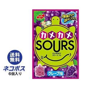 【全国送料無料】【ネコポス】ノーベル製菓 カメカメサワーズ(SOURS) グレープ味 45g×6個入|nozomi-market