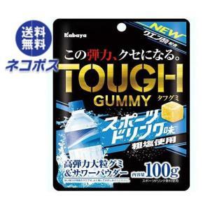 【全国送料無料】【ネコポス】カバヤ タフグミ スポーツドリンク味 100g×6袋入|nozomi-market