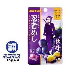 【全国送料無料】【ネコポス】UHA味覚糖 忍者めし (巨峰) 20g×10袋入|nozomi-market