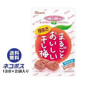 【全国送料無料】【ネコポス】カンロ まるごとおいしい干し梅 19g×12(6×2)袋入|nozomi-market