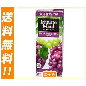 【送料無料】【2ケースセット】明治 Minute Maid(ミニッツメイド) グレープ100% 200ml紙パック×24本入×(2ケース)|nozomi-market