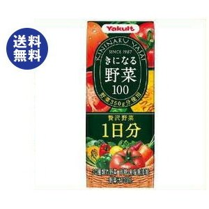 【送料無料】【2ケースセット】ヤクルト きになる野菜100 贅沢野菜1日分 200ml紙パック×24本入×(2ケース)|nozomi-market