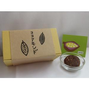 焼き菓子 ココアアーモンドクッキー|nposinsei
