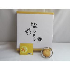 【贈答用】塩レモンクッキー|nposinsei